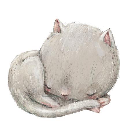 white sleeping cute cat