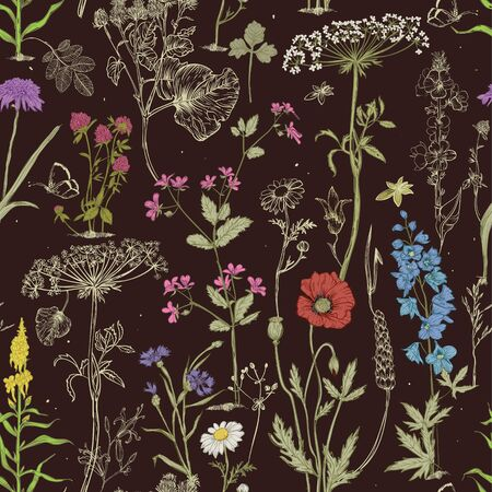 seamless pattern with wild vector flowers