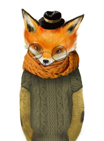 cute fox boy with glasses hat and green sweater Standard-Bild