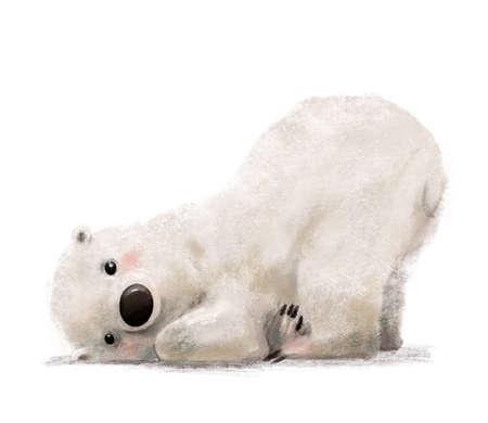 cute little lovely polar bear character on white background Foto de archivo