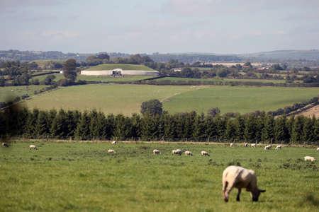 county meath: Farm in County Meath, Ireland