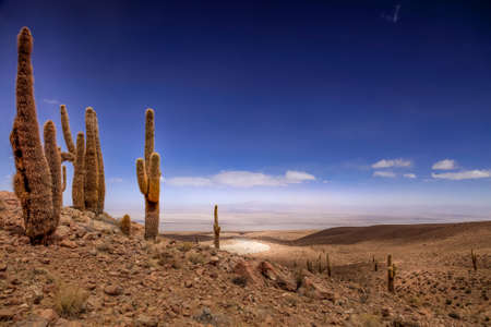 Arid landscape at the Valley of the Moon in Chile Stock Photo