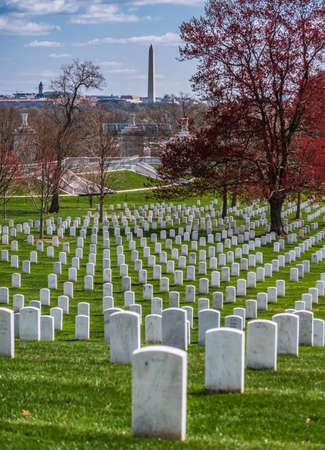 阿灵顿国家公墓的墓碑