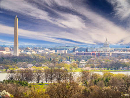 The United States Capitol, Washington D.C. 스톡 콘텐츠
