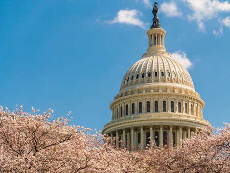 Edificio del Capitolio de los Estados Unidos durante la primavera
