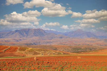 Wide view of the picturesque nature of Lesotho