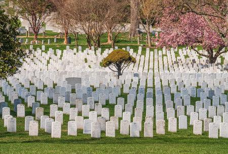 Headstones at the Arlington National Cemetery near Washington DC Editoriali