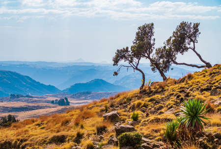 African landscape in the Simien mountains in northern Ethiopia