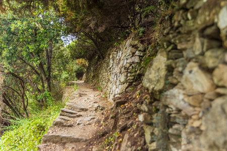 Treking path through the Cinque Terre park, Italy