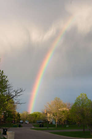 appeared: This rainbow appeared right after a rain storm.