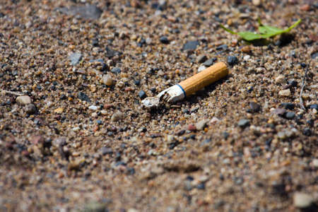 Smoked cigarette smashed and littered on the ground. photo