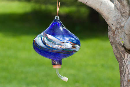 feeder: Hand Blown Glass Hummingbird Feeder hanging from a tree. Stock Photo
