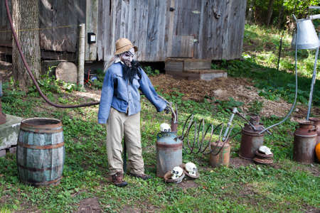 hayride: Halloween Display shown on a haunted hayride. Autumn display of a scarecrow.