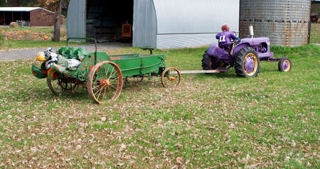 Colorful Halloween decorations at the farm. Vikings purple tractor. photo