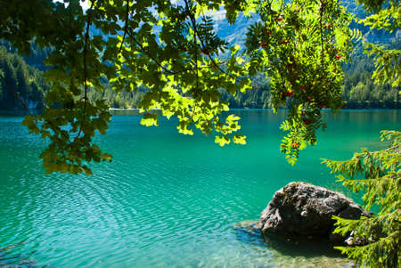 Lake Tovel in Italy Stock Photo - 8188827