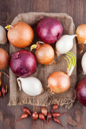 bagging: Different varieties of onions on a kitchen board and bagging