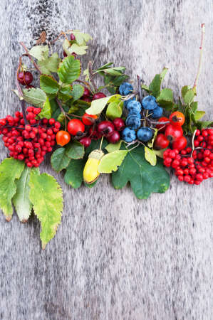 Autumn berries on old wooden surface top view photo