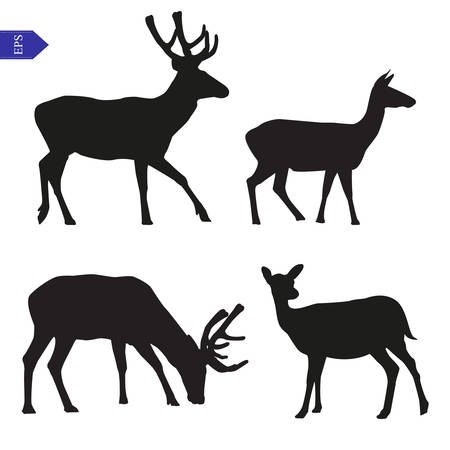 deer hunting: Vector silhouettes of males, females and young deer