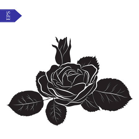 Silhouette flower and leaves of roses in black and white vector Vector