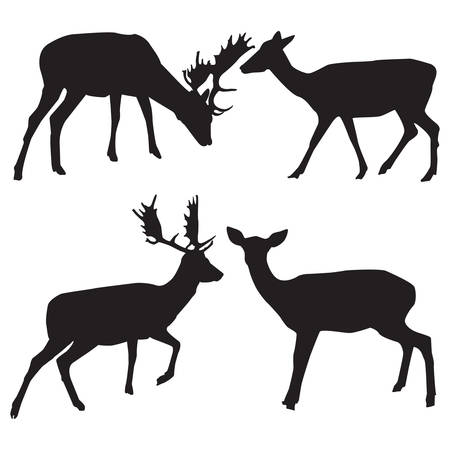 Silhouettes of male and female deer vector