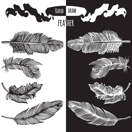 feather vector: Hands drawn bird feather vector in black and white Illustration