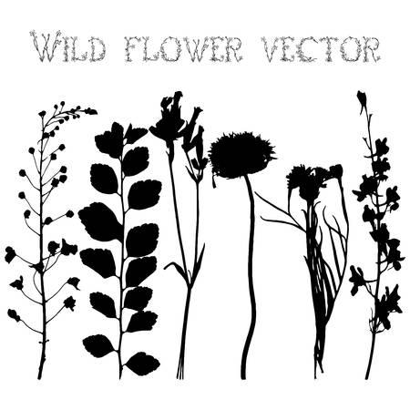 Set siluetas negras de flores silvestres y las hojas ilustración vectorial