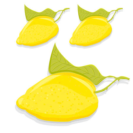juicy: Fruit juicy lemon with a leaf on a white background vector