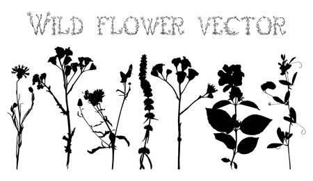 Conjunto de siluetas de flores silvestres y las hojas sobre un fondo blanco vector