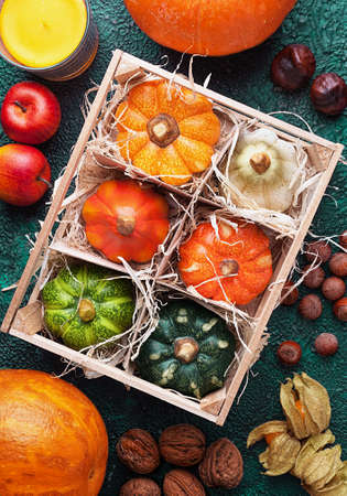Wooden box with set of different pumpkins top view surrounded autumn harvest Stock Photo