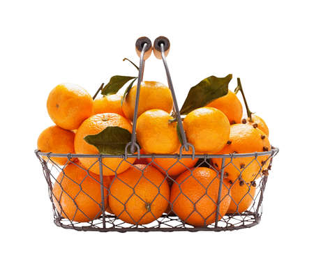 Oranges in metal wicker basket isolated