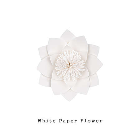 White paper flower handmade, top view, isolated
