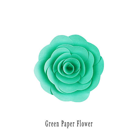 Green paper flower handmade, top view, isolated
