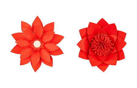 Set red paper flower handmade, top view, isolated