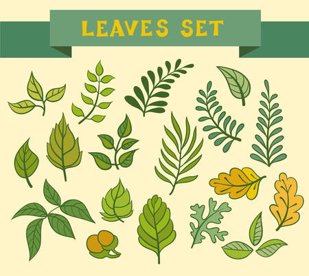 Set of leaves. Vector illustration. Wreaths and laurels elements, hand-drawn style. Vector