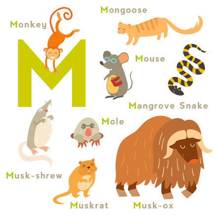 muskrat: M letter animals set. English alphabet. Vector illustration, isolated on white background
