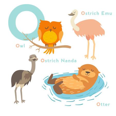 nutria caricatura: Conjunto de animales de letra o. Alfabeto inglés. Ilustración vectorial, aislado en el fondo blanco Vectores