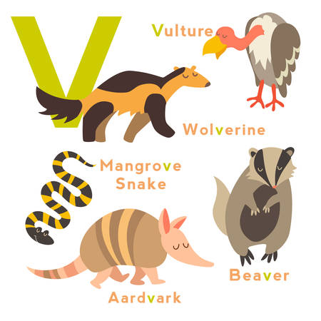 wolverine: V letter. English alphabet. Vector illustration, isolated on white background
