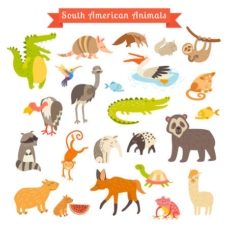 Sourth America animals  vector illustration. Big vector set. Isolated on white background. Preschool, baby, continents, travelling, drawn