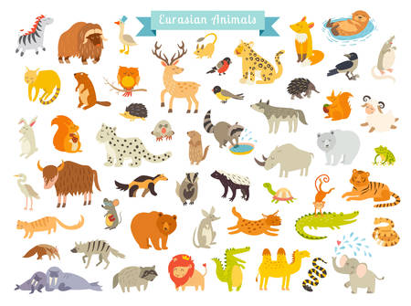 Eurasian animals vector illustration. The most complete big vector set of mammals in Eurasia. Also, birds, reptiles, aes life. Isolated on white background.