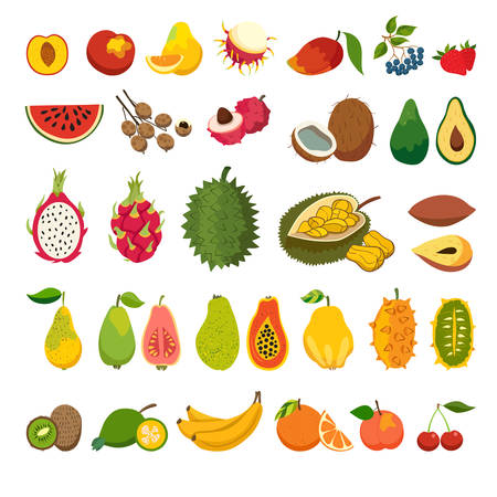 Les fruits exotiques vecteur de consigne. Juicy et fruits mûrs: la papaye, la goyave, vecteur de bande dessinée de mangue. fruits biologiques naturelles. Litchi, jacquier, ramboutan, fruit du dragon. Isolated illustration sur fond blanc
