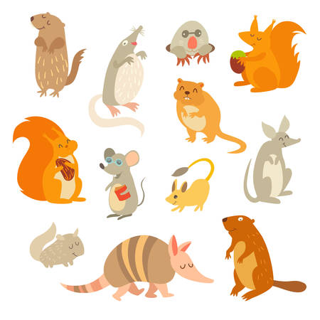 Rodent of the world, a big set vector illustration. Isolated on a white background. Beaver, weasel, squirrel, muskrat, tarbaganchik, muskrat, Battleship, bandicoot Çizim