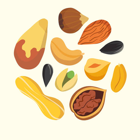Nuts on white background. Cartoon isolated vector. Healthy food