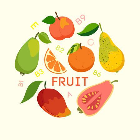 celulosa: La comida sana, frutas, celulosa, vitaminas. ilustración vectorial