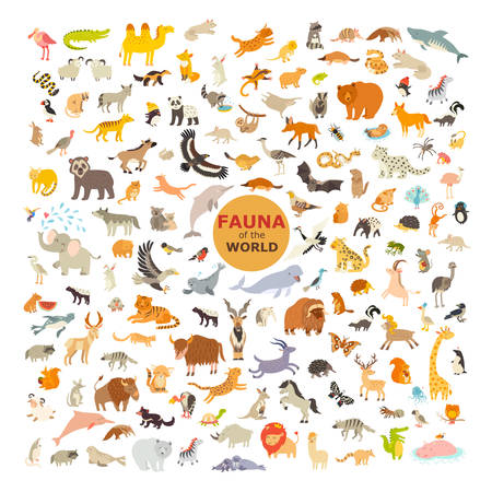 Animal cartoon vector illustration. Fauna icon set. Big collection of animals  isolated on a white background