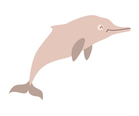 Chinese white dolphin icon vector illustration. Cartoon style partridge mammals, isolated on a white background Vettoriali