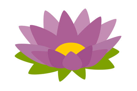 Lotus purple icon vector. Cartoon lotus sign isolated on white background