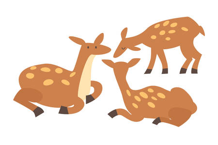 Deer animals vector illustration. Standing and seating deer. Brown wild animals drawing set in cartoon style. Isolated icon on white background Çizim