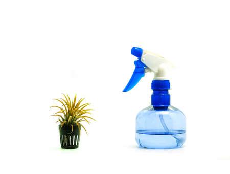 tillandsia: Drought tillandsia and blue sprayer Stock Photo