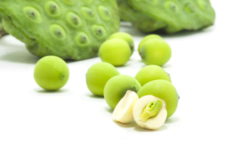 nelumbinis:  lian zi - The lotus seeds are used extensively in traditional Chinese medicine and desserts.