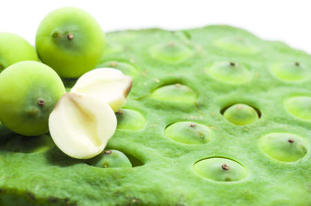 extensively:  lian zi - The lotus seeds are used extensively in traditional Chinese medicine and desserts.